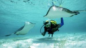 La maison Bleu todo turquoise - Turks and Caicos Rental